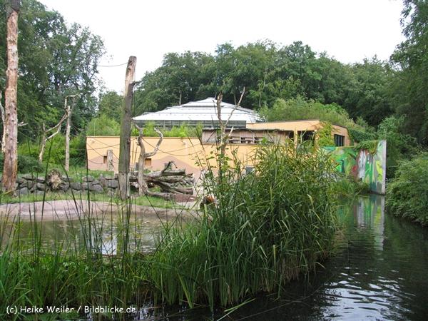 Zoo Dortmund 310711- IMG_4119_0291
