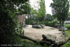 Zoo Duisburg 210810 - IMG_0486_1895