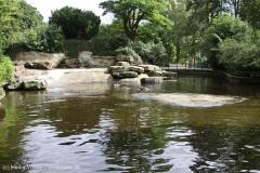 Zoo_Emmen_070915_IMG_7437_0122