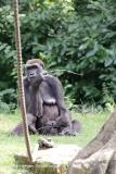 Zoo_Hannover_010917_IMG_8739