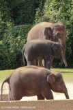Zoo_Hannover_020916_IMG_7142