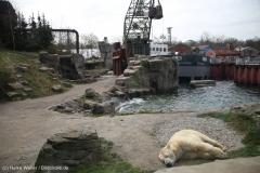 Zoo_Hannover_030416_IMG_0650