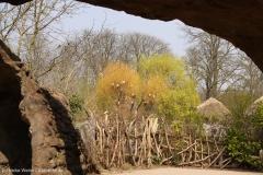 Zoo_Hannover_100415_IMG_2996_9410