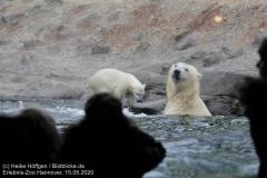 Zoo_Hannover_150520_IMG_0315_2