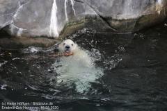 Zoo_Hannover_150520_IMG_0345