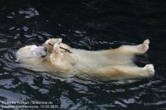 Zoo_Hannover_150520_IMG_0399