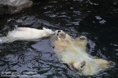 Zoo_Hannover_150520_IMG_0406