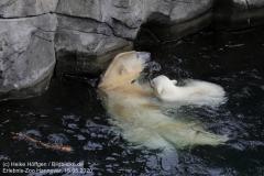 Zoo_Hannover_150520_IMG_0417