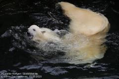 Zoo_Hannover_150520_IMG_0419