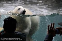 Zoo_Hannover_150520_IMG_0319
