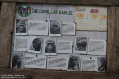 Zoo_Hannover_161118_IMG_8771_1576