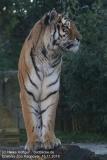 Zoo_Hannover_161118_IMG_8902