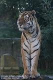 Zoo_Hannover_161118_IMG_8905