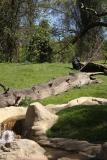 Zoo_Hannover_220416_IMG_0956