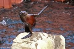 Zoo_Hannover_220416_IMG_1192
