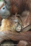Zoo_Hannover_230813_IMG_4083