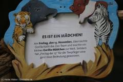 Zoo_Hannover_231215_IMG_2440