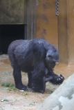 Zoo_Hannover_231215_IMG_2455