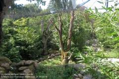 Zoo Hannover_240818_IMG_7504_1089