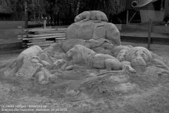 Zoo Hannover_240818_IMG_7869_1113