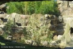Zoo_Hannover_270913_IMG_4632_2863