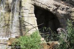 Zoo_Hannover_270913_IMG_4636