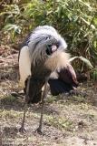 Zoo_Hannaover_310317_IMG_3718