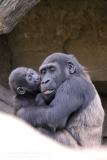 Zoo_Hannaover_310317_IMG_3796