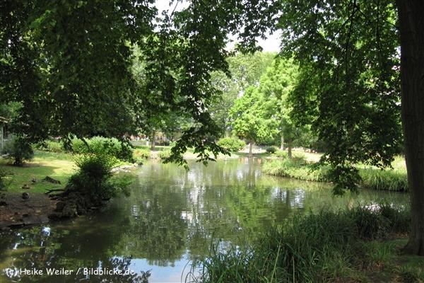 Zoo Koeln 230710- IMG_7938_1386