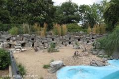 Zoo Koeln 230710- IMG_8478_1445