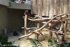 Zoo Krefeld 240710- IMG_8941_1504
