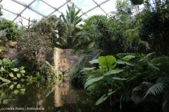 Zoo_Leipzig_110517_IMG_5274