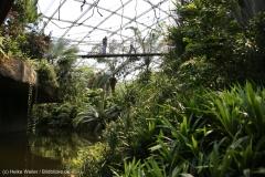 Zoo_Leipzig_110517_IMG_5277