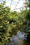 Zoo_Leipzig_110517_IMG_5284