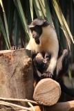 Zoo_Leipzig_110517_IMG_5305