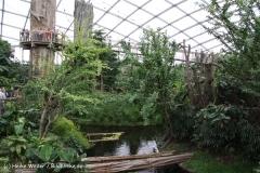 Zoo Leipzig 230711- IMG_3363