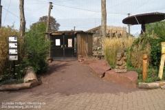 Zoo Magdeburg_260918_IMG_8234_1327