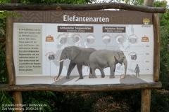 Zoo Magdeburg_260918_IMG_8240_1328