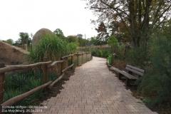 Zoo Magdeburg_260918_IMG_8240_1332
