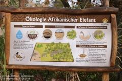 Zoo Magdeburg_260918_IMG_8241