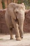 Zoo Magdeburg_260918_IMG_8247