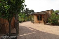 Zoo Magdeburg_260918_IMG_8253_1339