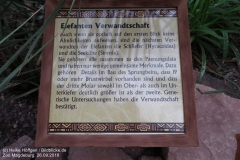 Zoo Magdeburg_260918_IMG_8253_1350