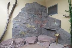 Zoo Magdeburg_260918_IMG_8253_1353