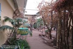 Zoo Magdeburg_260918_IMG_8253_1355