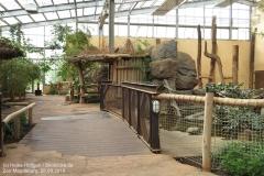 Zoo Magdeburg_260918_IMG_8259_1367