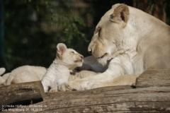 Zoo Magdeburg_260918_IMG_8570