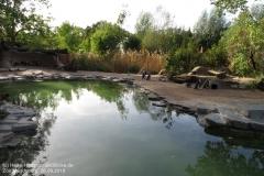 Zoo Magdeburg_260918_IMG_8654_1431