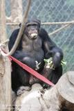 Zoo Magdeburg_260918_IMG_8666