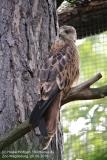 Zoo Magdeburg_260918_IMG_8718